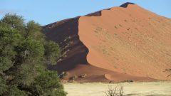 Einsatzaufruf Namibia-Süd